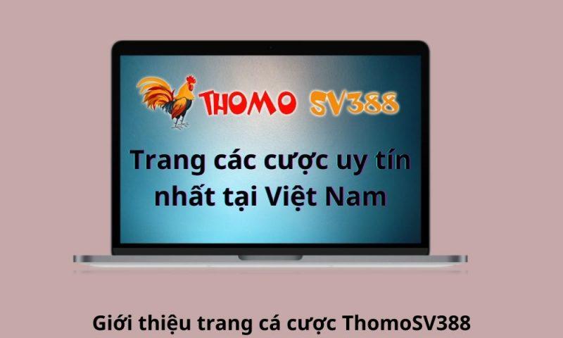 ThomoSV388 – Trang cá cược chất lượng hàng đầu Việt Nam